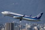 カンクンさんが、福岡空港で撮影した全日空 737-881の航空フォト(写真)