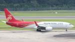 誘喜さんが、シンガポール・チャンギ国際空港で撮影した深圳航空 737-87Lの航空フォト(写真)