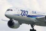 Koenig117さんが、那覇空港で撮影した全日空 787-8 Dreamlinerの航空フォト(写真)