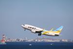 msrwさんが、羽田空港で撮影したAIR DO 737-781の航空フォト(写真)