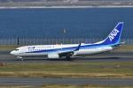 よしポンさんが、羽田空港で撮影した全日空 737-881の航空フォト(写真)