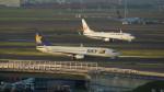 FRTさんが、羽田空港で撮影したスカイマーク 737-82Yの航空フォト(飛行機 写真・画像)