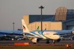 安芸あすかさんが、成田国際空港で撮影したバンコクエアウェイズ A319-131の航空フォト(写真)