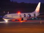 ムネキンさんが、熊本空港で撮影したチャイナエアライン 737-8FHの航空フォト(写真)