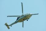 あきらっすさんが、キャンプ座間で撮影したアメリカ海軍 MH-60S Knighthawk (S-70A)の航空フォト(飛行機 写真・画像)