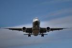 GRX135さんが、新千歳空港で撮影した全日空 777-281の航空フォト(写真)