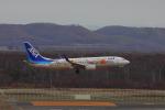 じゃりんこさんが、新千歳空港で撮影した全日空 737-881の航空フォト(写真)