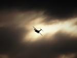 jp arrowさんが、岐阜基地で撮影した航空自衛隊 C-1FTBの航空フォト(写真)