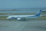 SuneKumaさんが、那覇空港で撮影した全日空 787-8 Dreamlinerの航空フォト(写真)