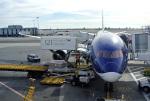 なないろさんが、ジョン・F・ケネディ国際空港で撮影したアゼルバイジャン航空 787-8 Dreamlinerの航空フォト(写真)