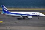 euro_r302さんが、羽田空港で撮影した全日空 A320-211の航空フォト(写真)