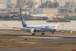TOM310さんが、羽田空港で撮影した全日空 787-8 Dreamlinerの航空フォト(写真)