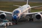 TOM310さんが、羽田空港で撮影した全日空 787-9の航空フォト(写真)