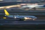 TOM310さんが、羽田空港で撮影したソラシド エア 737-86Nの航空フォト(写真)