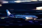 TOM310さんが、羽田空港で撮影した全日空 737-881の航空フォト(写真)