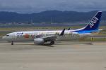 キイロイトリ1005fさんが、関西国際空港で撮影した全日空 737-881の航空フォト(写真)