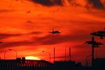 関西国際空港 - Kansai International Airport [KIX/RJBB]で撮影された香港エクスプレス - HK Express [UO/HKE]の航空機写真