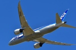 Dutchsamuさんが、成田国際空港で撮影した全日空 787-8 Dreamlinerの航空フォト(写真)
