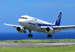 kando-yamaさんが、八丈島空港で撮影した全日空 A320-211の航空フォト(写真)