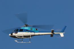 GNPさんが、ツインリンクもてぎで撮影したエクセル航空 AS355N Ecureuil 2の航空フォト(飛行機 写真・画像)