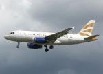 voyagerさんが、ロンドン・ヒースロー空港で撮影したブリティッシュ・エアウェイズ A319-131の航空フォト(飛行機 写真・画像)