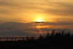 サトヤンさんが、成田国際空港で撮影したデルタ航空 A350-941XWBの航空フォト(写真)