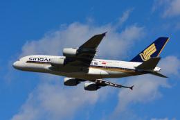 パンダさんが、成田国際空港で撮影したシンガポール航空 A380-841の航空フォト(写真)