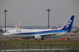 msrwさんが、成田国際空港で撮影した全日空 737-881の航空フォト(飛行機 写真・画像)