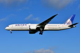 saoya_saodakeさんが、成田国際空港で撮影したユナイテッド航空 787-9の航空フォト(写真)