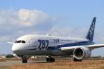 musashiさんが、松山空港で撮影した全日空 787-8 Dreamlinerの航空フォト(写真)