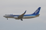 amagoさんが、成田国際空港で撮影した全日空 737-781の航空フォト(写真)