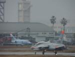 M.Ochiaiさんが、新田原基地で撮影した航空自衛隊 T-4の航空フォト(写真)