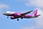 hirohiro77さんが、新千歳空港で撮影したピーチ A320-214の航空フォト(写真)