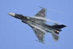 eikas11さんが、岐阜基地で撮影した航空自衛隊 F-2Aの航空フォト(写真)
