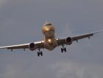 ここはどこ?さんが、札幌飛行場で撮影したフジドリームエアラインズ ERJ-170-200 (ERJ-175STD)の航空フォト(写真)