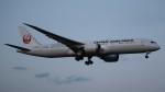 redbull_23さんが、成田国際空港で撮影した日本航空 787-9の航空フォト(写真)