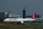 ja007gさんが、成田国際空港で撮影したターキッシュ・エアラインズ 777-3F2/ERの航空フォト(写真)