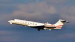 パンダさんが、羽田空港で撮影したTAI LEASING INC G-V-SP Gulfstream G550の航空フォト(飛行機 写真・画像)