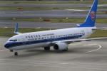 ☆ライダーさんが、成田国際空港で撮影した中国南方航空 737-81Bの航空フォト(写真)