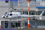 Chofu Spotter Ariaさんが、東京ヘリポートで撮影したオートパンサー AS350B Ecureuilの航空フォト(飛行機 写真・画像)