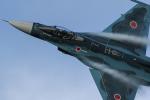 leoncatさんが、岐阜基地で撮影した航空自衛隊 F-2Aの航空フォト(写真)