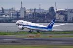 SOMAさんが、羽田空港で撮影した全日空 787-8 Dreamlinerの航空フォト(写真)