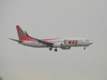 commet7575さんが、福岡空港で撮影したティーウェイ航空 737-8GJの航空フォト(写真)