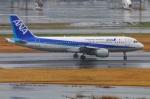 Tomo_lgmさんが、羽田空港で撮影した全日空 A320-211の航空フォト(写真)