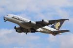 せぷてんばーさんが、成田国際空港で撮影したシンガポール航空 A380-841の航空フォト(写真)