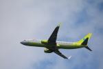 msrwさんが、成田国際空港で撮影したジンエアー 737-8B5の航空フォト(写真)