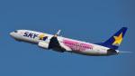 パンダさんが、羽田空港で撮影したスカイマーク 737-86Nの航空フォト(飛行機 写真・画像)