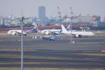 神宮寺ももさんが、羽田空港で撮影したインターナショナル・ジェットクラブ 737-7GV BBJの航空フォト(写真)