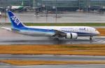 Tomo_lgmさんが、羽田空港で撮影した全日空 787-8 Dreamlinerの航空フォト(写真)