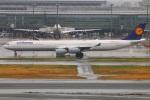 Tomo_lgmさんが、羽田空港で撮影したルフトハンザドイツ航空 A340-642Xの航空フォト(写真)